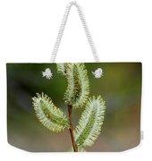 Willow In The Bloom Weekender Tote Bag