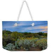 Winter In The Valley  H1933 Weekender Tote Bag by Mark Myhaver