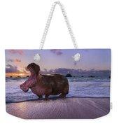 Yawning Coastal Hippo Hello Weekender Tote Bag