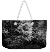 Yellow Tree In The Curve In Black And White Weekender Tote Bag