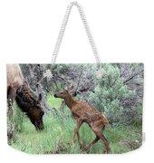Yellowstone Elk Calf And Cow Weekender Tote Bag