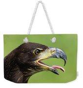 Young Bald Eagle 2 Weekender Tote Bag