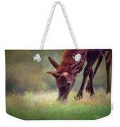 Young Elk Grazing Weekender Tote Bag