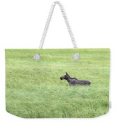 Young Moose Weekender Tote Bag