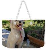 Zoey Towel Weekender Tote Bag