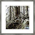 _0010060 Framed Print