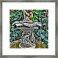 002 Fountain Buffalo Botanical Gardens Series Framed Print