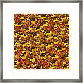 0167 Abstract Thought Framed Print