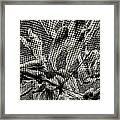 0619 Framed Print