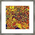 0621 Abstract Thought Framed Print
