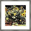 08252013038 Framed Print