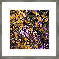 Abstract 276 Framed Print