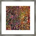 Abstract 295 Framed Print
