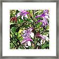 Art In The Garden II Framed Print