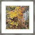 Autumn Steps Near Smalls Falls In Maine Framed Print