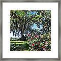 Bok Tower Gardens Framed Print