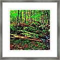Brook Texture 16 Framed Print