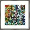 Colors Of Happiness Framed Print