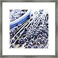 Dried Lavender Framed Print