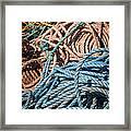 Fishing Ropes Framed Print