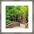 Folsom Bridge At Furnace Creek Framed Print
