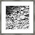 Frozen Riverbed In Winter Framed Print