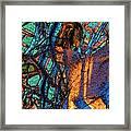 Gabbro Framed Print