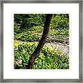 Garden Bench Framed Print