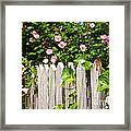 Garden Fence With Roses Framed Print by Elena Elisseeva