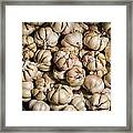 Garlic In A Basket. Framed Print