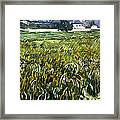 House At Auvers Framed Print