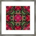 Kaleidoscope Made From An Image Of A Coleus Plant Framed Print
