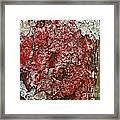 Red Lichen  Framed Print