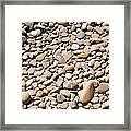 River Rocks Pebbles Framed Print