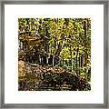 Rock Shelf And Forest Framed Print