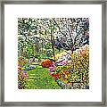 Spring Forest Vision Framed Print