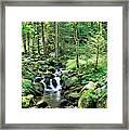 Stream Flowing Through A Forest, Usa Framed Print