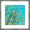 Underwater Life Framed Print