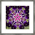 Flower Kaleidoscope Resembling A Mandala Framed Print