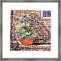 1067 Azalea Way Framed Print