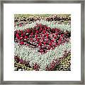Flowerbed Framed Print