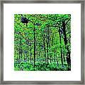 Forest Art Framed Print