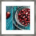 Pomegranate 14 Framed Print