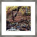 South Branch Quantico Creek Framed Print