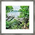 Lake Santeetlah In Great Smoky Mountains North Carolina Framed Print