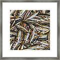 Tile Of Fishes Framed Print