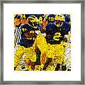 1997 What A Year Framed Print