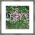 A Seat By The Flowers Framed Print