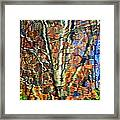 Autumnal Abstracious Framed Print