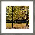 Colorful Fall Autumn Park Framed Print